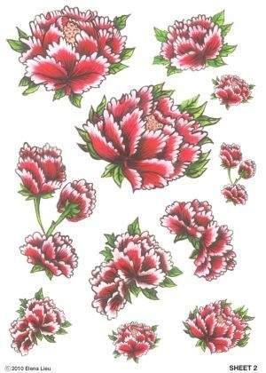 Flower Peonys Temporary Tattoos