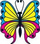 Colured Buterfly Temporary Tattoos